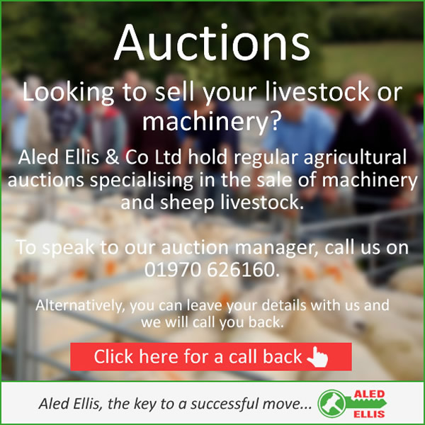 Livestock and Machinery Auctions