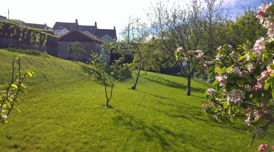 llwyn, Borth - Garden garage.jpg