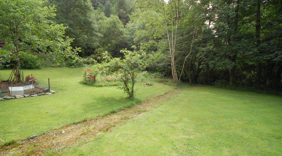 Glanafon - garden 1.jpg