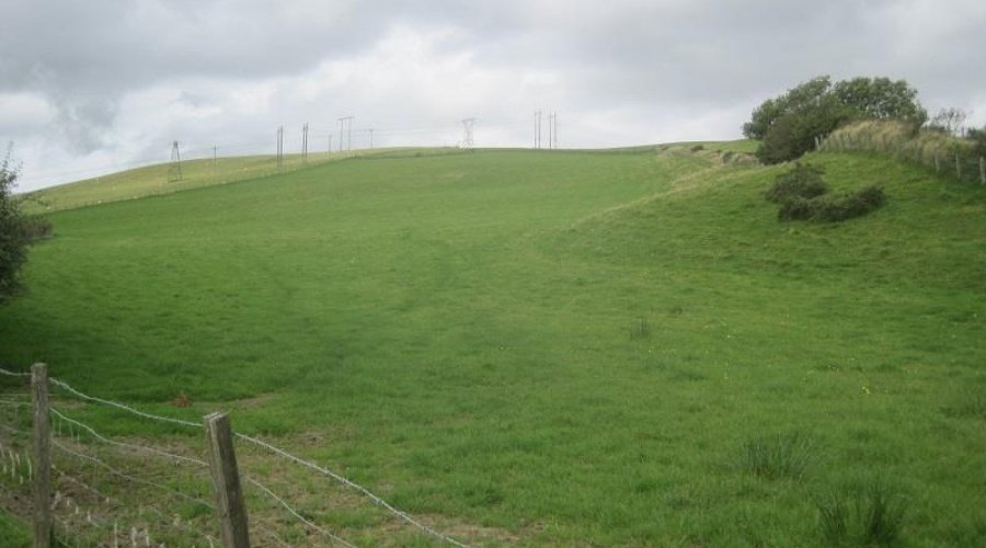 Bwadrain field 1.jpg