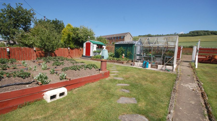 Hafod garden 2.jpg