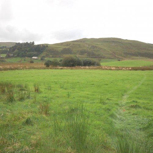 Tynbryn Land