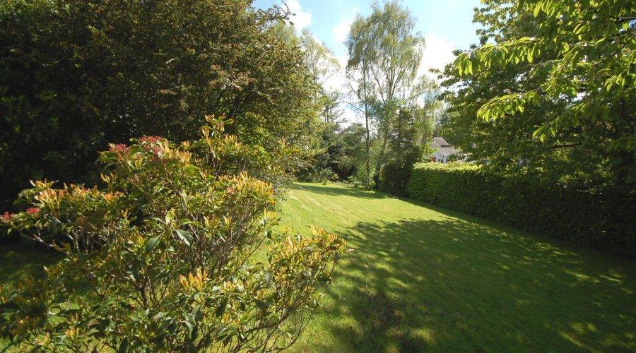 Meall Beag garden 7.jpg