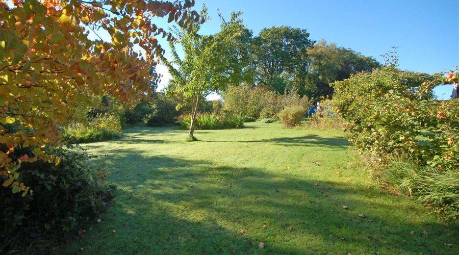 Ty Hir - garden 2.jpg