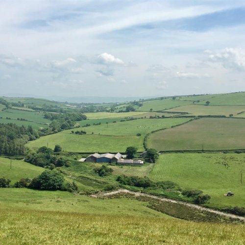 Rhydmeirionydd Farm