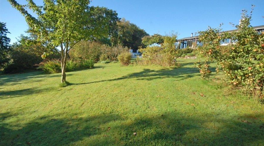 Ty Hir - garden 3.jpg