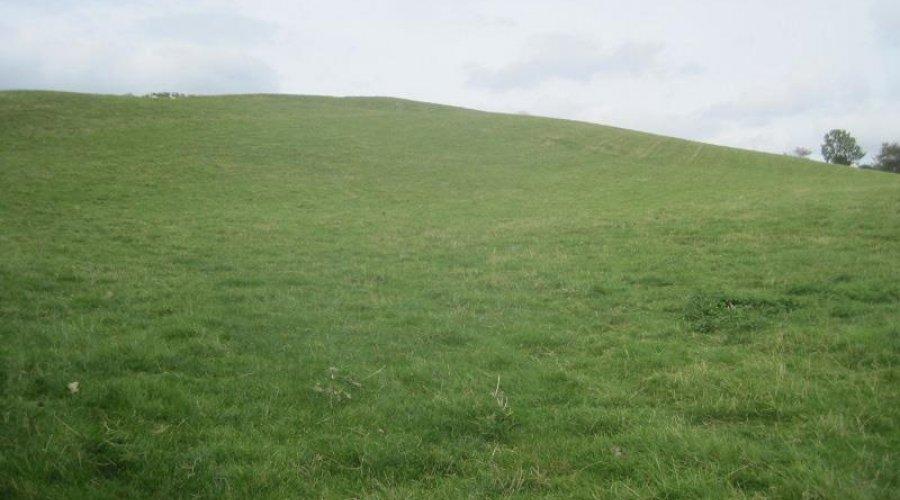 Bwadrain field main.jpg