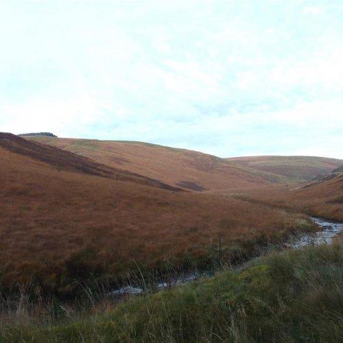 Nant Iwan, Nant Y Graig, Bryn Brith And other sheep walks, Soar Y Mynydd