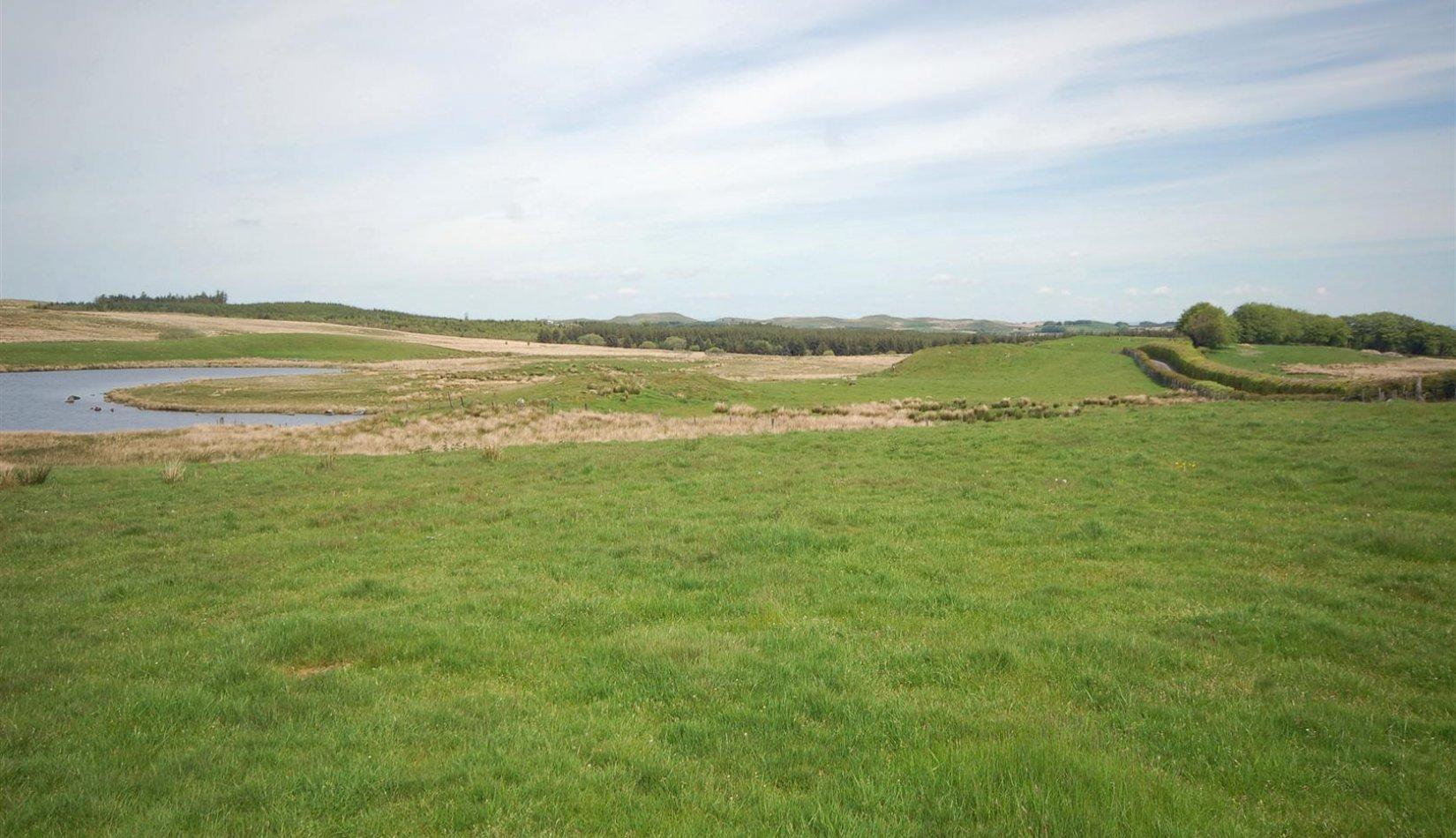 Penlon BP - land 4.jpg