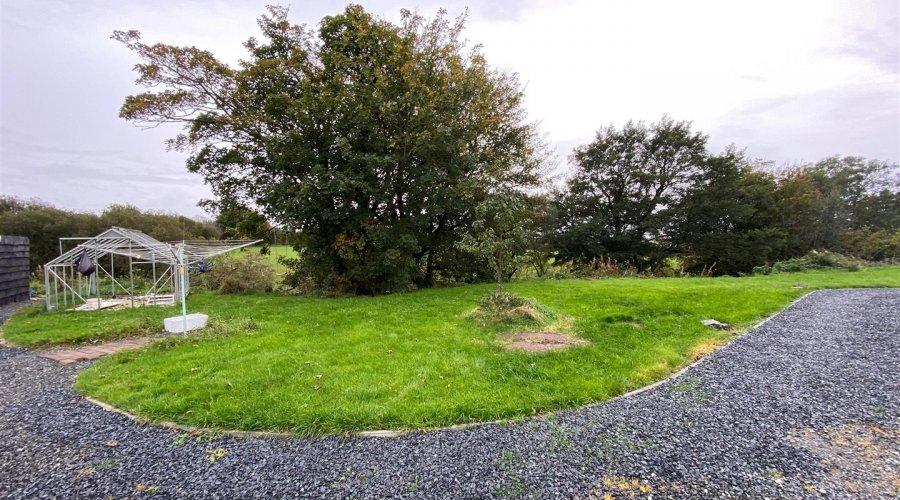 rhydowen rear garden.JPG